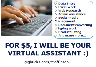be your professional virtual assistant for 2 hours