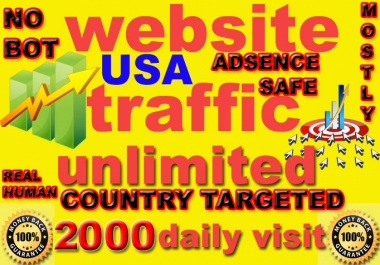 drive Unlimited Targeted Website Social Traffic Visitors