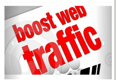 give a real human TRAFFIC software in 24 hours
