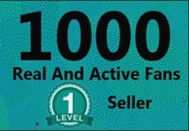 Give you 1,000+Instantly started Active Facebook Fan Page likes for