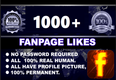 add 1050 Permanent Fan/Business Page Facebook Likes