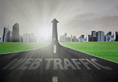 drive professionally TARGETED 15,000 usa website TRAFFIC