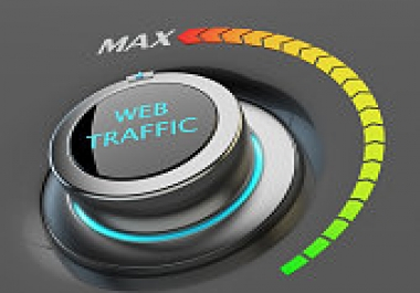 Drive 100,000 USA Targeted Website Traffic