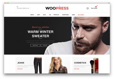 create, edit or develop a WordPress Website of any kind