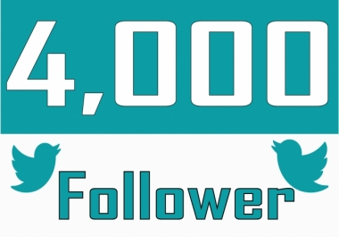 deliver 4,000 twitter followers >> start instant>>