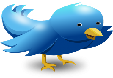 deliver 1,000 twitter followers >> start instant>>