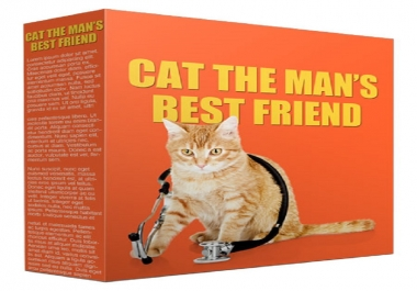 Give You 5 Products About Understanding And Raising And Dealing With The Cats