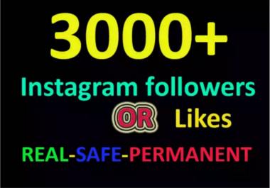 add stable 1000 instagram followers or 2000 post likes in 24 hours