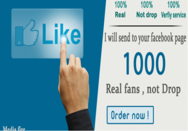 give you 3000 facebook likes ( less 2 hours )