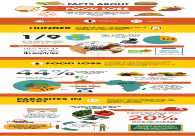 create infographics and flyers