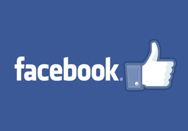 Provide High Quality 1000+ Facebook Fanpage Likes