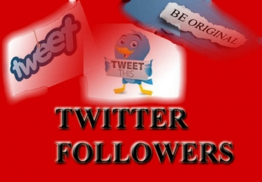 Give you 1000 Guaranteed Twitter Real Followers.