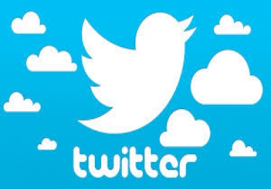 Deliver 1250+ High Quality Twitter Followers