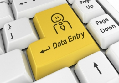 do any data entry or typing jobs any time