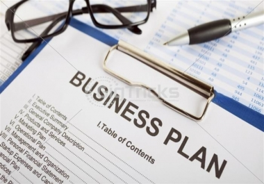 WRITE a PROFESSIONAL BUSINESS PLAN and PROPOSAL