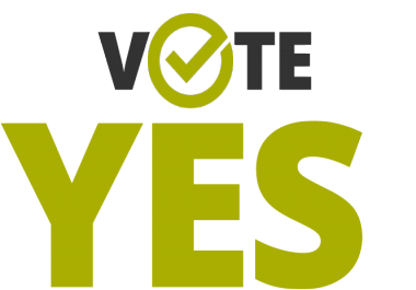 provide real people or traffic for your any voting contest