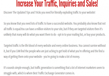 drive UNLIMITED DAILY TARGETED Website TRAFFIC for 6 MONTHS