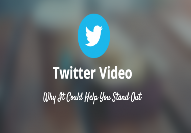 deliver 500 Twitter Video views