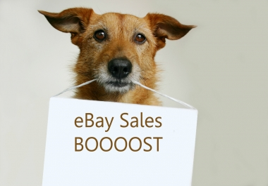 Take Your eBay Business To The Next Level