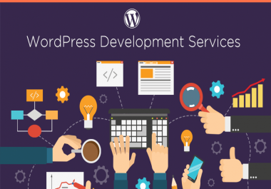 create professional wordpress website