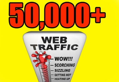 Give you 50,000 Real/Human/Unique Visitors safely.