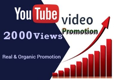 provide viral 2500 youtube views with 50 likes and 10 subscribers.