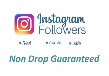 give you 1500+ Non Drop Guaranteed Instagram Followers
