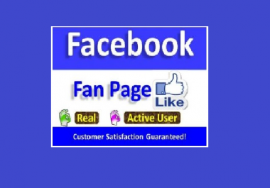 Provide Real High Quality 500+ non drop Facebook Fanpage Likes
