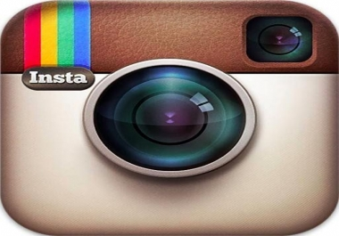 provide you 1,000+ Instant Instagram Followers