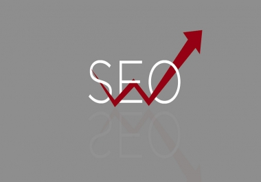 perform a SEO Scan of Your URL