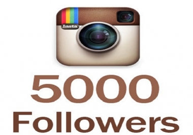 provide you 5,000+ Non Drop Instagram Followers .