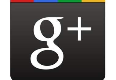 get your website 333+ guaranteed real Google +1s in 1day