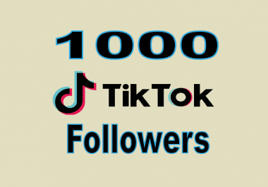 provide you high quality 1,000 TikTok followers