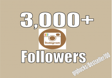 Add 3,000 Instagram fast Followers