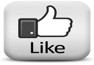 give u 100 real and permanent facebook likes