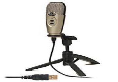 create AMAZING voiceovers for your audio or video project