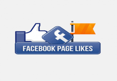 Add 1,100+ Facebook Page Likes [20 Days Refill]