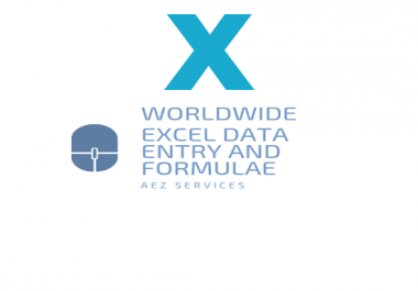 do professional excel data entry and formulae