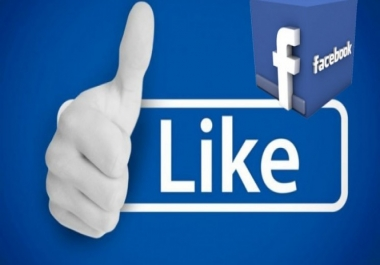 Add 200+ social media Fans to your Facebook page or Business Page Likes