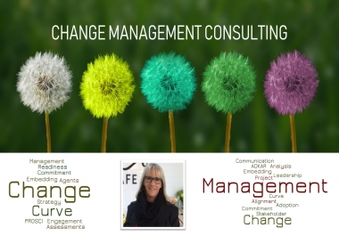 help you drive change in your business