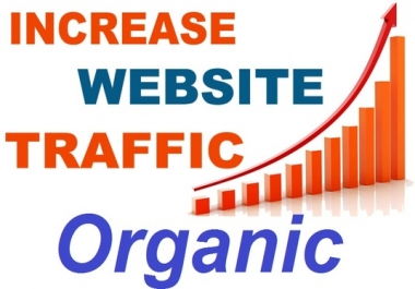 Give Real 20000 Human Wedsite Traffic