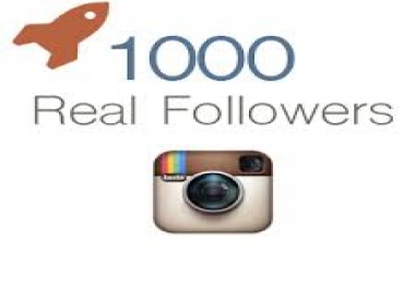give you Permanent 1000 Instagram followers for