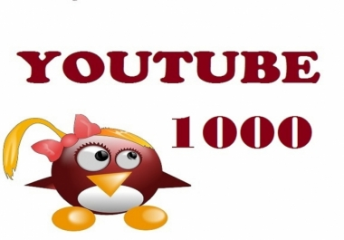 provide real safe youtube video 1000 views