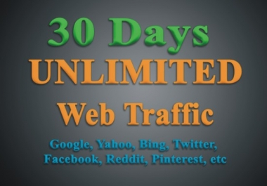 Boost Google, Website Ranking, Solo Ads With USA Targeted Web Traffic