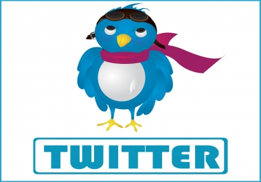 Give 1,000 Twitter Video Views
