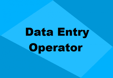 Do Extensive Web Research And Data Entry