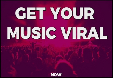 professionally promote your music on social media