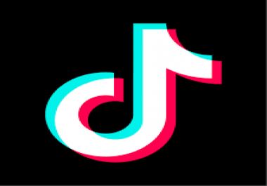 Give You 1000 Plus Fans On Tiktok