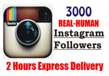 Add 3000 Permanent Instagram Followers
