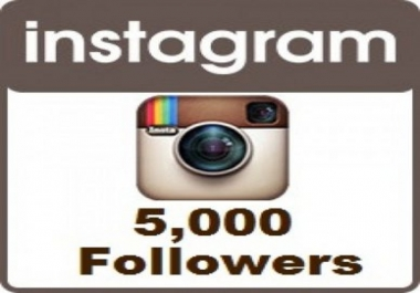 give you 5000+ Non Drop Guaranteed Instagram Followers
